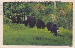 Happy Bear Family in the Great Smoky Mountains - pm 1946 - Linen