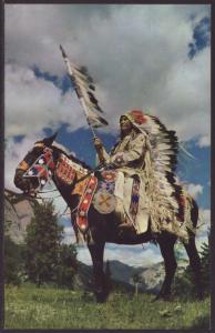 Indian Chief on Horseback Postcard