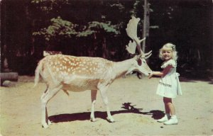 Deer Forest at Paw Paw Lakes Coloma MI Dextone Little Girl Chrome Postcard