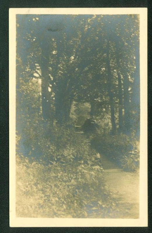 Forest Nature Pathway TOGAS MAINE Trees Real Photo Postcard RPPC