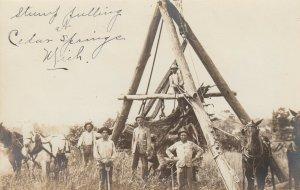 RP: CEDAR SPRINGS , Michigan, 1900-10ss ; Stump Pulling