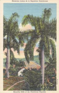 DOMINICAN REPUBLIC; Beautiful Hills, Royal Palm Trees, 30-40s