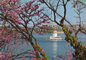 Turkey Istanbul View of Leander's Towers Through Judaea's Trees