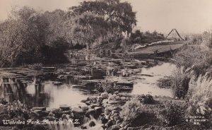 Waterlea Park Blenheim New Zealand Real Photo Old Postcard