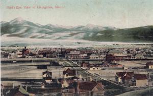 BIRD'S EYE VIEW OF LIVINGSTON, MONTANA, PRE-1907.
