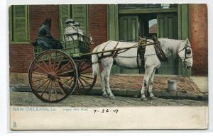 Creole Milk Maid Horse Cart New Orleans Louisiana 1907 Tuck postcard