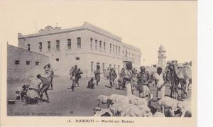 Djibouti , 00-10s ; Marche aux Bestiaux