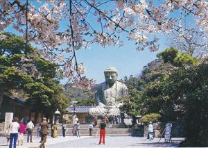 Japan The Great Buddha Of Kamakura At Cherry Bloom