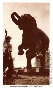 Misouri St Louis Zoo Performing Elephant