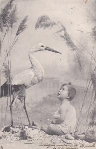 TUCK; Art Series 1314, Child looking at Stork, 1904