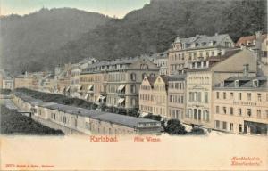 KARLSBAD CZECH REPUBLIC~ALTE WIESE~BRUCK & SOHN HAND COLOR 1900s PHOTO POSTCARD