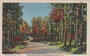 New Hampshire Greetings From Sanbornville 1946 Curteich