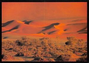 Namibia Tranquillity Dunes in the Namib Desert Landscape