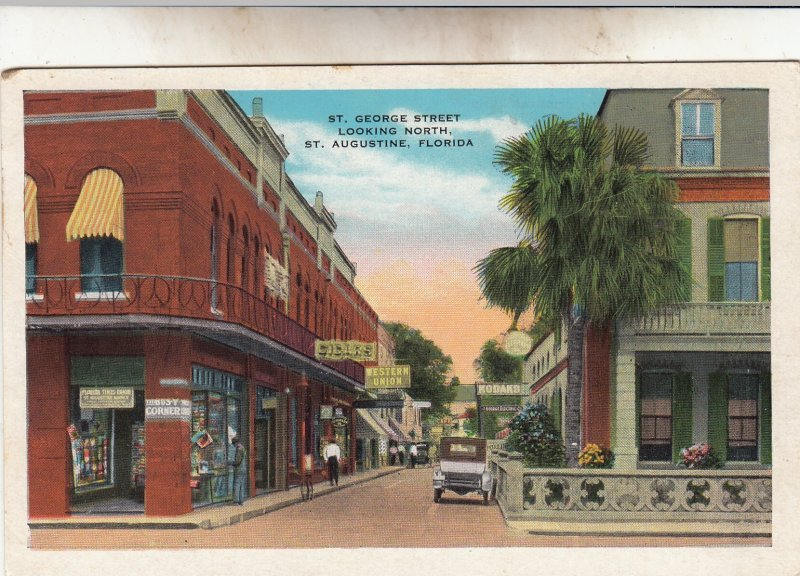P1904, old postcard car people store signs etc st augustine florida