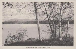 Connecticut Twin Lake West Shore Of Twin Lake Albertype