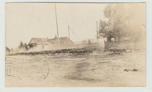 livestock  RANCH RPPC 1908 CHICO CA FRONT POSTMARK Postcard farm