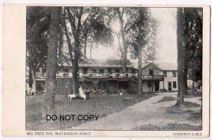 Big Tree Inn, McPerson Point, Conesus Lake NY