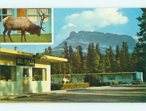 Unused Pre-1980 OLD CARS & BEL PLAZA MOTEL IN BANFF Alberta CANADA u0732