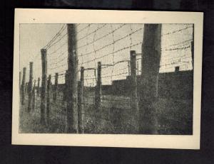 Mint 1955 Majdanek Poland Concentration Camp Museum Postcard Barb Wire Fence KZ