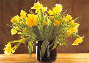 Yellow Flowers in Vase Blumen Fleurs Foto: Hubatka Mauritius