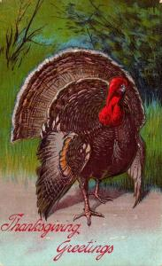 Thanksgiving With Turkey