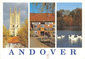 Andover St. Mary's Church Town Mills Charlton Lakes Birds