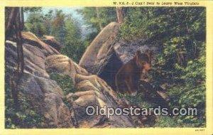 West Virginia Bear Unused