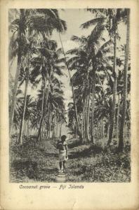 fiji islands, Cocoanut Grove, Native Male (1899)
