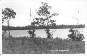 Kalkaska Michigan~Blue Lake~Trees Along Shore~1947 RPPC Postcard