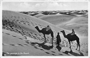 Lot121 the passage in the desert camel types folklore north africa