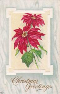Christmas Greetings Poinsettas