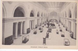 Illinois Chicago Stanley Field Hall Natural History Museum
