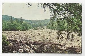 PA Blue Rocks Berks County River of Glacial Rocks Vintage Postcard