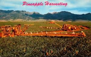 Hawaii Pineapple Harvesting With Libby's Modern Machinery
