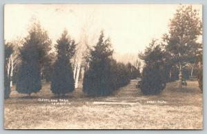 LeMars IA~Evergreens* Hide Barren Trees~Dead of Winter~Cleveland Park~RPPC 1906