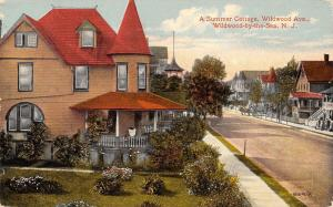 Wildwood by the Sea New Jersey~Wildwood Avenue~Summer Cottages~1914 Postcard