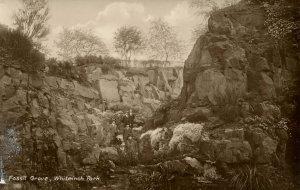 UK - Scotland, Whiteinch Park. Fossil Grove   *RPPC