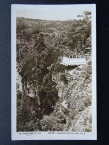 Australia NSW THE BULLI LOOKOUT South Coast Old RP Postcard by Rose Stereograph