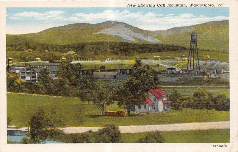 C57/ Waynesboro Virginia Va Postcard Linen Calf Mountain Factory Tank