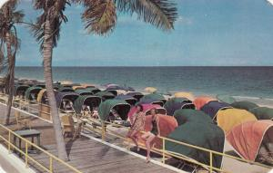 FORT LAUDERDALE , Florida , 1950-60s ; The Beach, Umbrella chairs