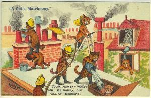 Louis Wain A Cat's Matrimony Fire Rescue Signed Vintage Postcard