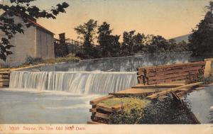 Sayne Pennsylvania~Old Mill Dam~Track to Water~Lumber~1907 PCK Postcard