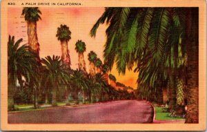 Palm Drive CALIFORNIA LINEN CA - PC - POSTED WW2 VINTAGE POSTCARD