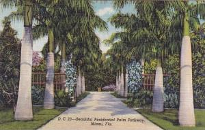 Beautiful Residential Palm Pathway Miami Florida Curteiclh