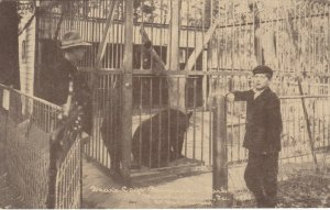 MARSHALLTOWN , Iowa, 1900-1910's; Bear's Cage , Riverview Park