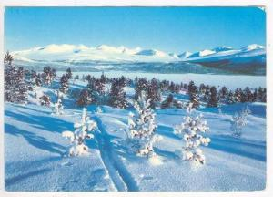 Winter Scene In Norway, 1940-1960s