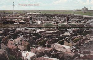 WINNIPEG, Manitoba, Canada, 00-10s; Winnepeg Stock yards