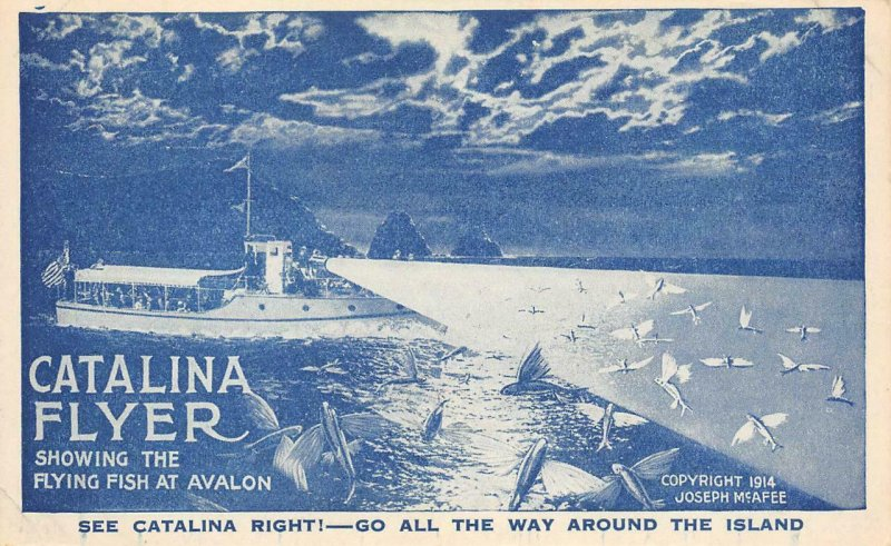 CATALINA FLYER Flying Fish, Avalon, Catalina Island Excursion Boat 1914 Postcard