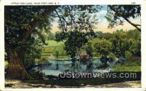 Little York Lake, New York, NY Post Card Postcard Little York Lake NY Postal ...
