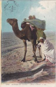 Dans le Desert , 00-10s